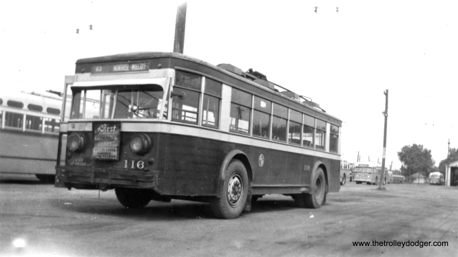 CTA trolley bus 116.