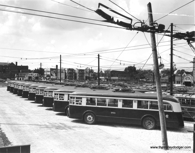 A lineup of CSL trolley buses purchased in 1937 from Brill. The location probably Central and Avondale, now the site of the Kennedy expressway.