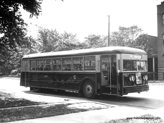CSL trolley bus 165 on route 76 - Diversey. (CSL Photo, Krambles-Peterson Archive)