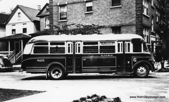 "CSL bus 825, signed for Peterson. Bill Robb: ""Calumet & South Chicago 825 is a 1939 White 805M which ran until a general purge of obsolete buses in 1949."" Andre Kristopans: ""Most likely turning from north on Catalpa to west on Hollywood. Loop at the time was Bryn Mawr-Catalpa-Hollywood-Broadway."""