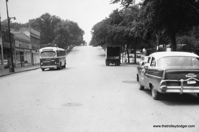"CTA bus 2543 is heading east on 103rd Street at Longwood Drive on Route 103 (103rd-106th Streets) in the late 1950s. The building directly behind the bus is now occupied by a Starbucks. Our resident south side expert M. E. writes, ""Not showing in this picture (because of the trees) is Chicago's only castle, on the northwest corner of 103rd and Longwood. (Longwood is at the bottom of the ""hill"". Did you know: The land atop the ""hill"" is geologically called Blue Island? It begins north of 87th St. where the Dan Ryan's Woods toboggan slide was.)"" On the other hand, Stu Slaymaker says, ""The shot of ACF-Brill bus that is labeled, 103rd and Longwood, was actually taken at 111th and Longwood. My old neighborhood. Out of the picture behind the photographer, is the R. I. Suburban Line Morgan Park-111th station. The used car lot on the right corner, was a Texaco station in the 1960s. The trees are so lush, you can't see the Walker Branch Library, at the top of the hill."""