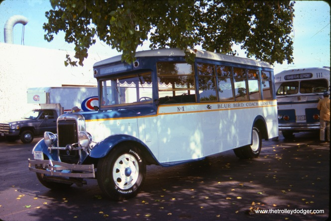 Someone gave me this slide. I am not sure of the circumstances, but it seems to show Blue Bird Coach Lines bus #1.